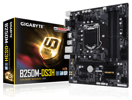 Gigabyte B250M-DS3H (LGA1151, 4xDDR4 2400 up to 64GB, VGA, DVI, HDMI, mATX) (Б/У)